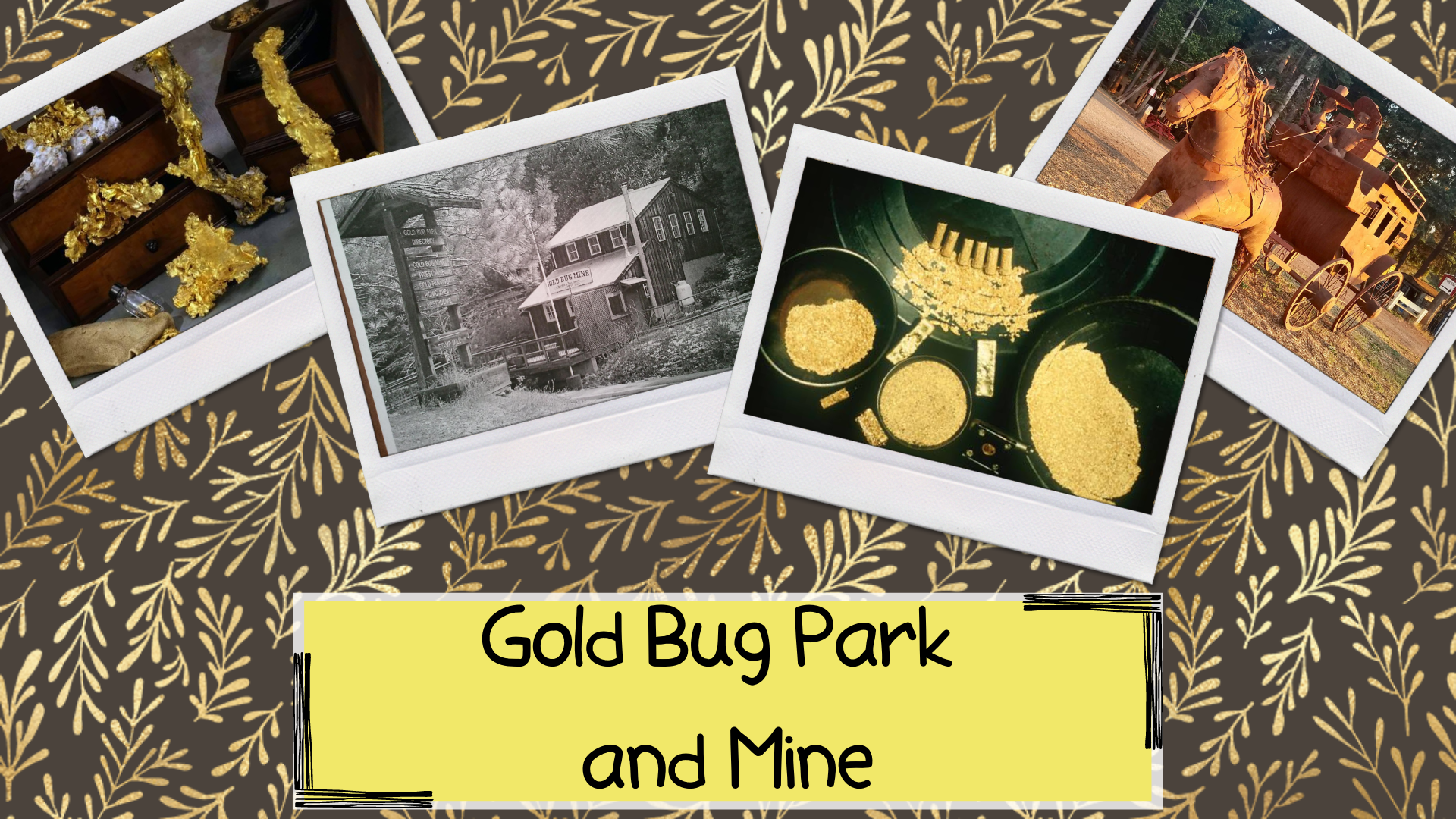 Gold Bug Park and Mine